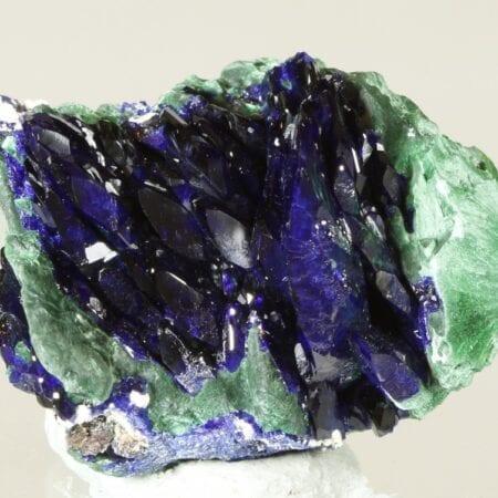 fan-azurite-1817398796