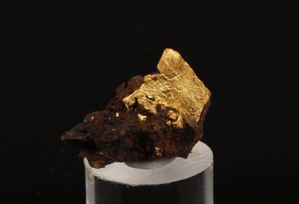 crystallized-gold-limonite-2058405925