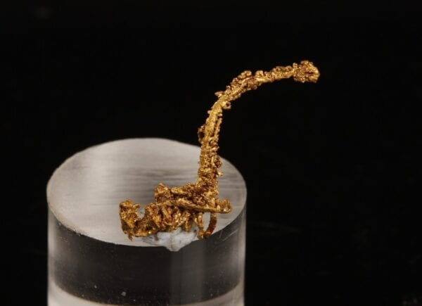crystallized-gold-wire-922326597