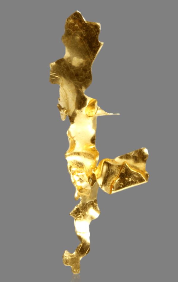 gold-leaf-682599077