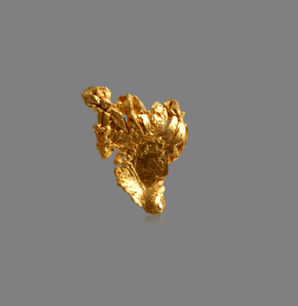 crystallized-gold-1702436441