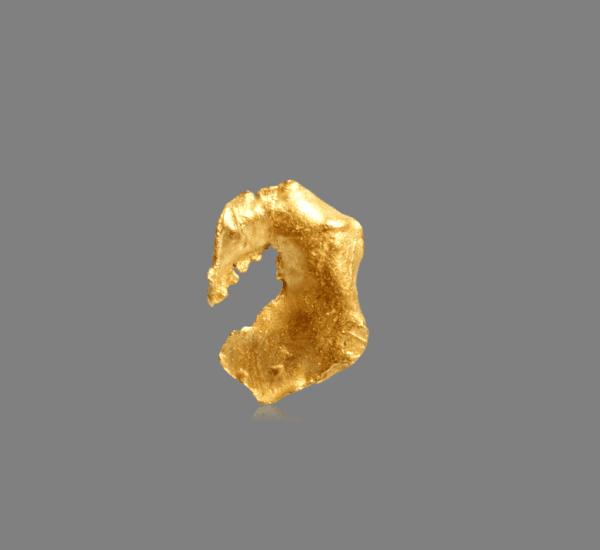 crystallized-gold-leaf-1773288889