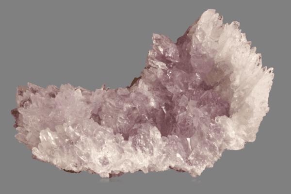 amethyst-flower-1937598848