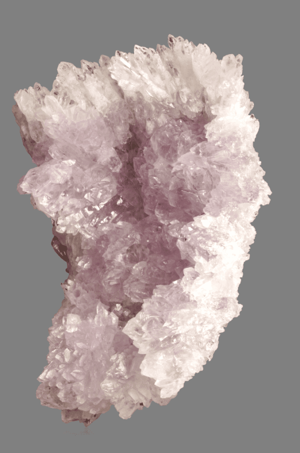 amethyst-flower-2059804550