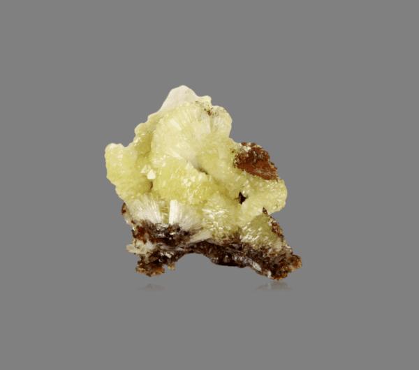 adamite-1822881581