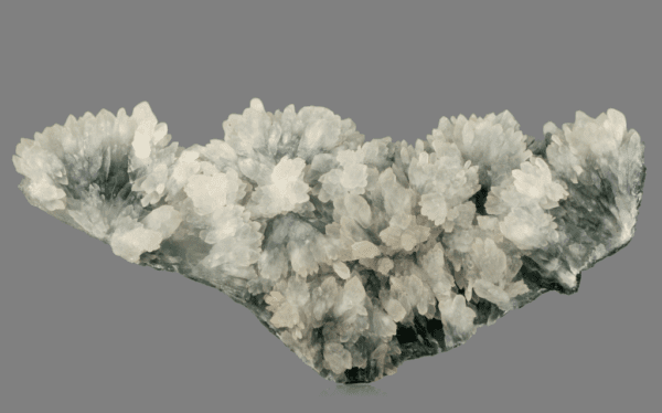 amethystine-quartz-flowers-1078321906