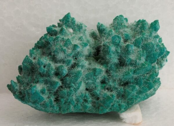 kobyashevite-selenite-calcite-1004349426