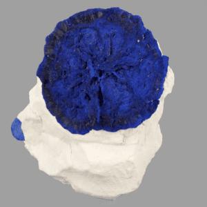 azurite-sun-1631926902
